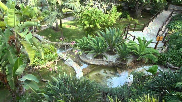 Molino del Inca - Jardin Botanico
